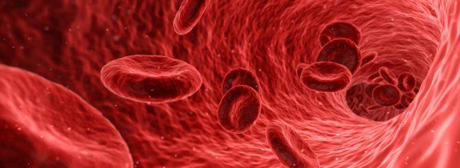 Bild på röda blodkroppar, erytrocyter