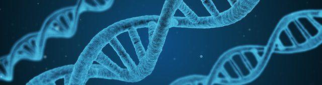 Illustration av DNA-spiraler.