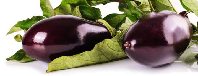 Bild på två auberginefrukter