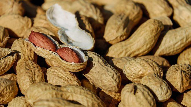 Bild på jordnötter.