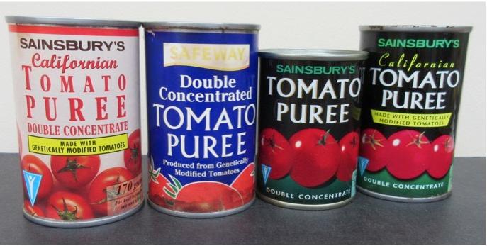 Bild på burkar med tomatpuré producerad från den modifierade brittiska tomaten . Foto: Donald Grierson