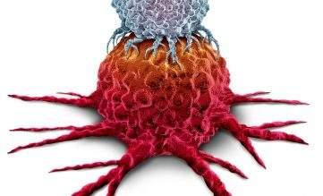 Illustration av en T-cell som attackerar en cancercell