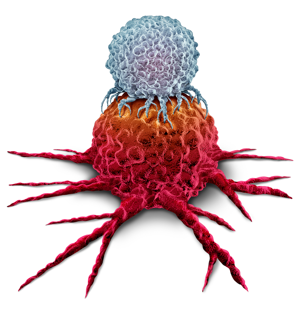 Illustration av en T-cell som attackerar en cancercell
