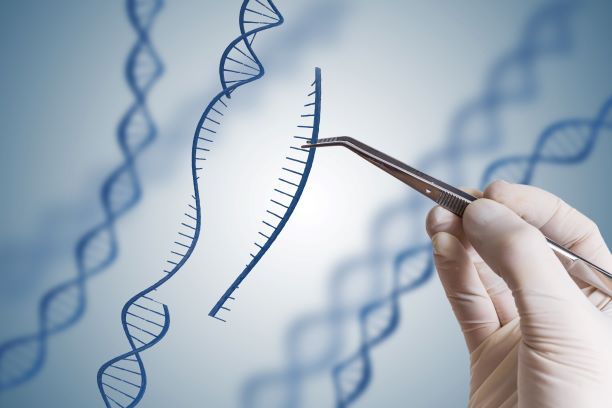 Bilden visar en hand som med en pincett tar bort en sekvens från en DNA-spiral.