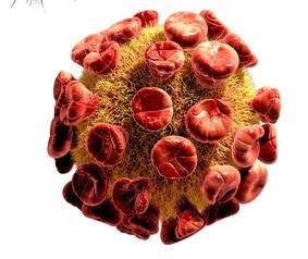 Bild av ett virus.