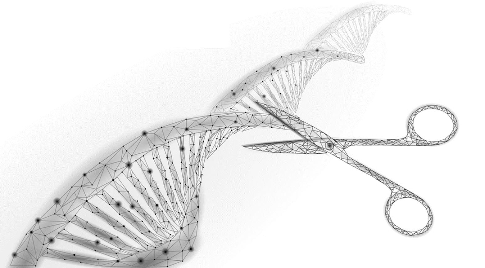 DNA-spiral som klippt itu av en sax